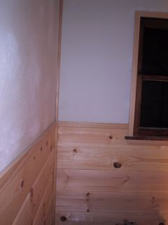Won't somebody try to convince me not to paint this fine woodwork?