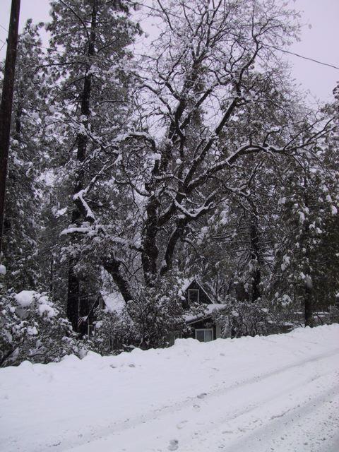 Down on the street. Idyllwild, CA February 2009