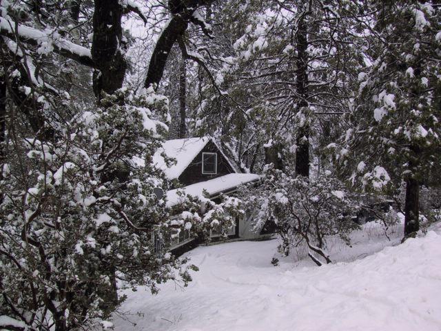 Wintery weather. Idyllwild, CA February 2009