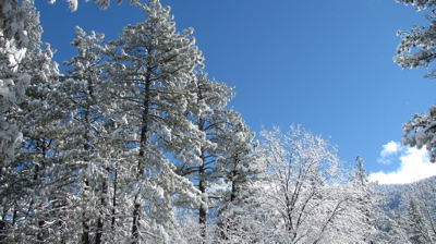 Snowy ridgeline.
